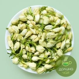 Цветы жасмина (Моли Хуа)