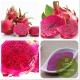 Матча розовая (экстракт питахайи)